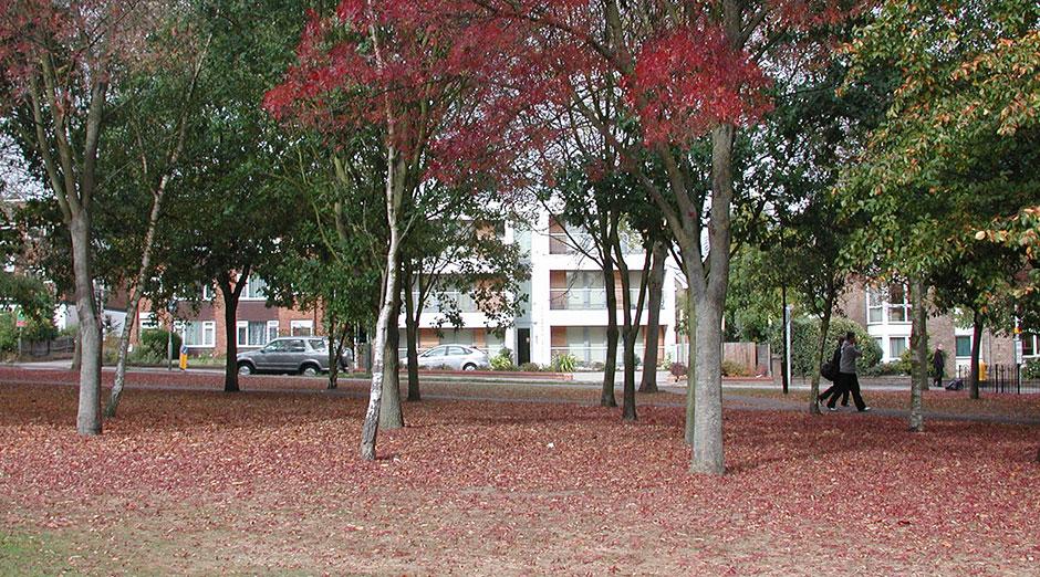 Park Lodge 1 web13